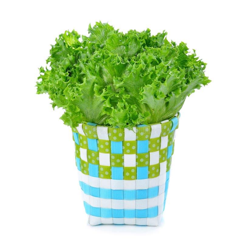 Свежий органический зеленый салат в корзине стоковые изображения