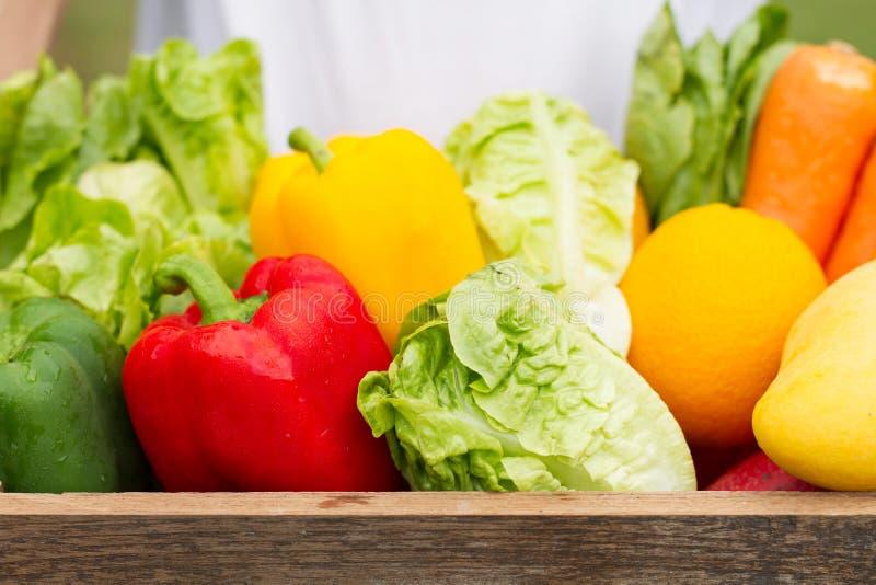 Свежий органический овощ в сборе деревянной клети как раз от фермы стоковое изображение