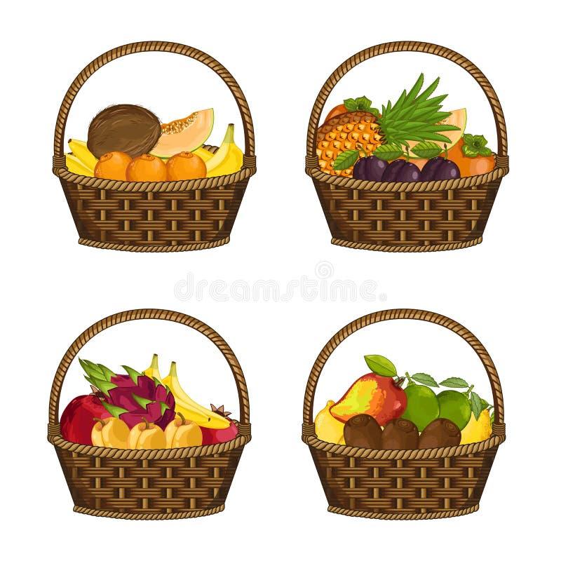 Свежий органический плодоовощ в комплекте плетеной корзины иллюстрация штока