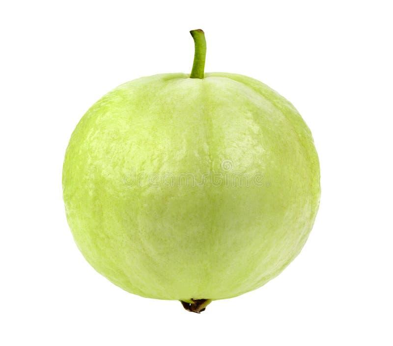 Свежий плодоовощ Guava изолированный на белой предпосылке стоковое фото