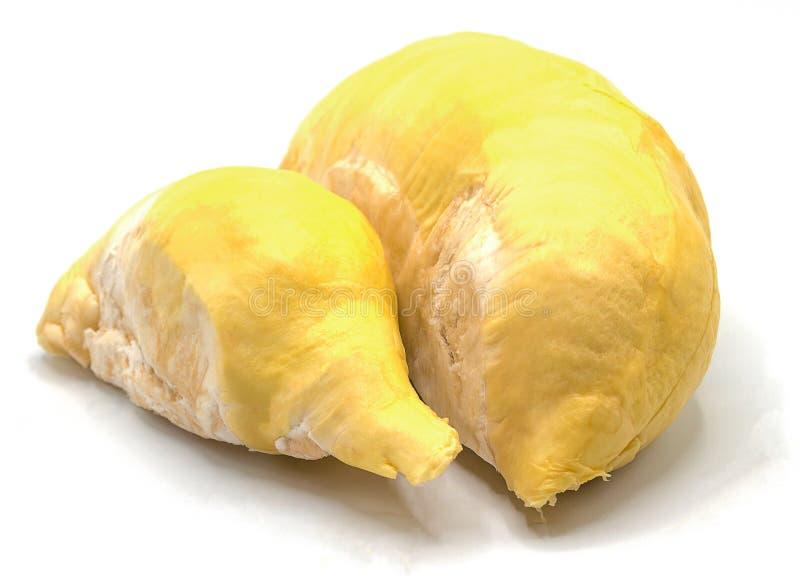 Свежий плод дуриана изолированный на белой предпосылке стоковая фотография