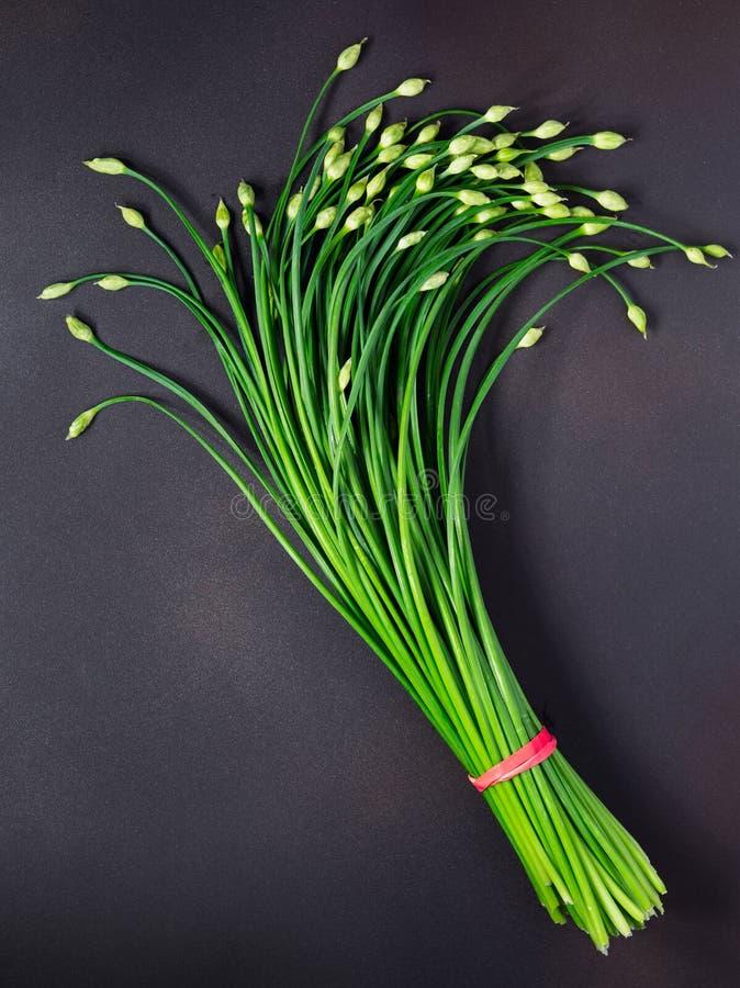 Свежий пук китайских цветя Chives стоковые изображения rf