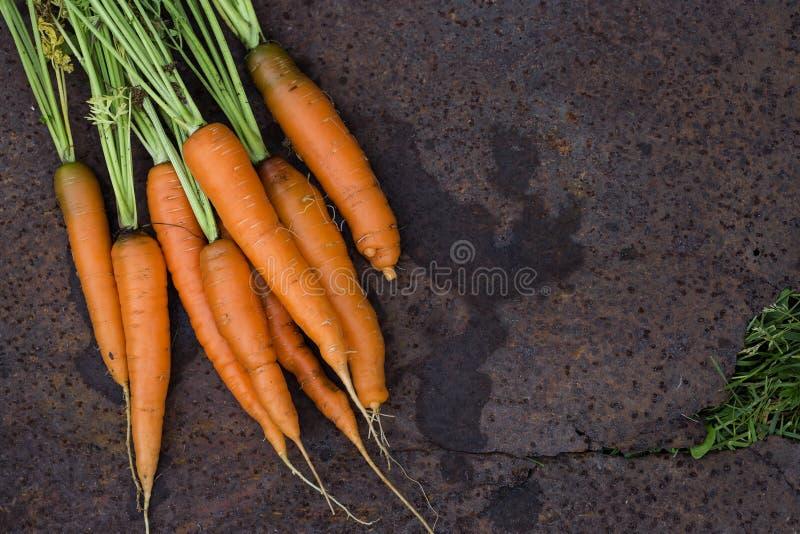 свежий пук морковей на старой предпосылке стоковое изображение