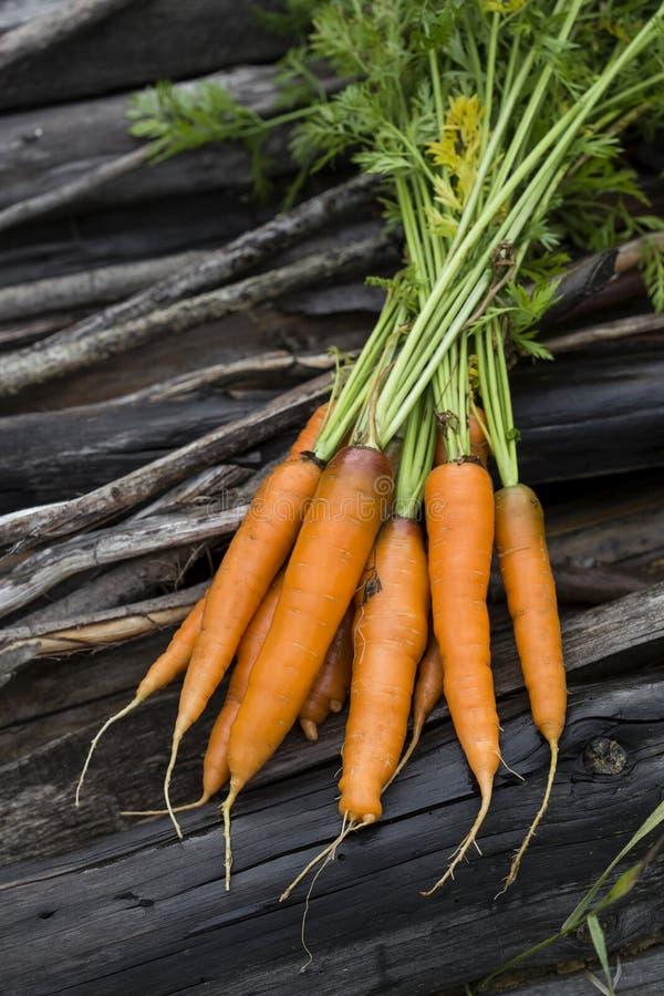 свежий пук морковей на старой предпосылке стоковые изображения rf