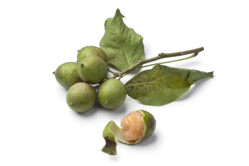 Свежий плодоовощ quenepa стоковое изображение