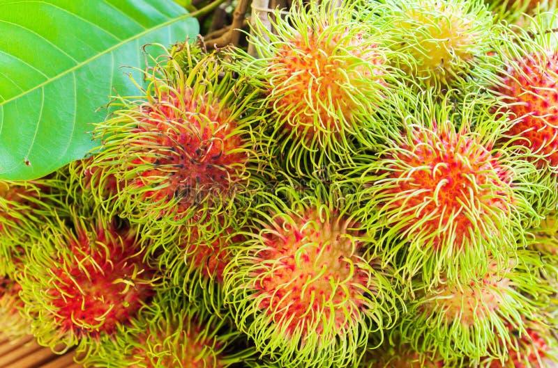 Download Свежий рамбутан стоковое фото. изображение насчитывающей плодоовощи - 41653152