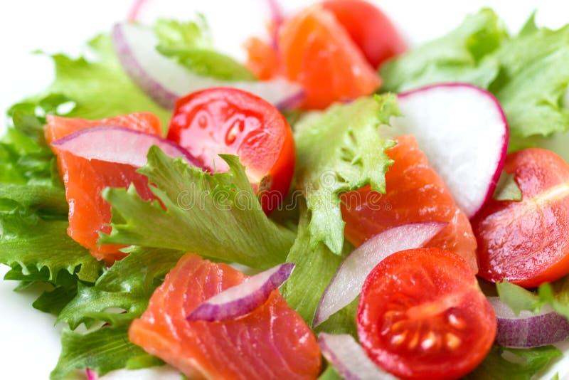 Свежий салат от семг и овощей на плите стоковые изображения