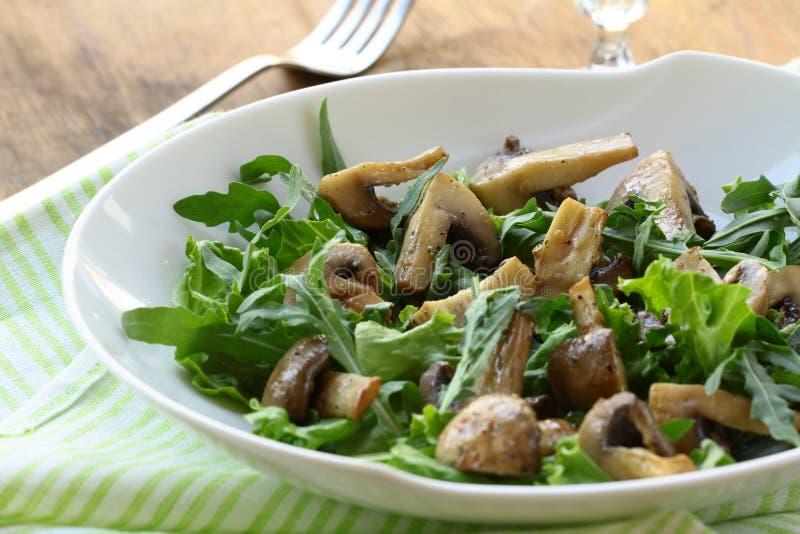 Свежий салат с зажженными грибами стоковая фотография rf