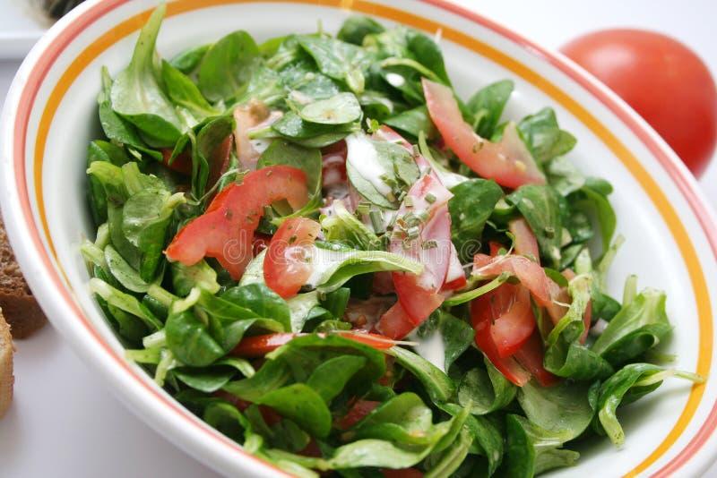 Download свежий салат стоковое фото. изображение насчитывающей заедк - 6854912