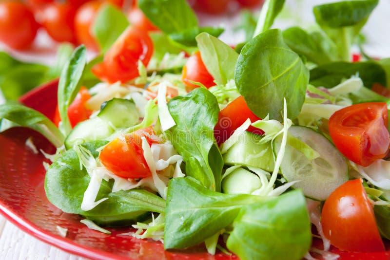Свежий салат весны с капустой стоковая фотография