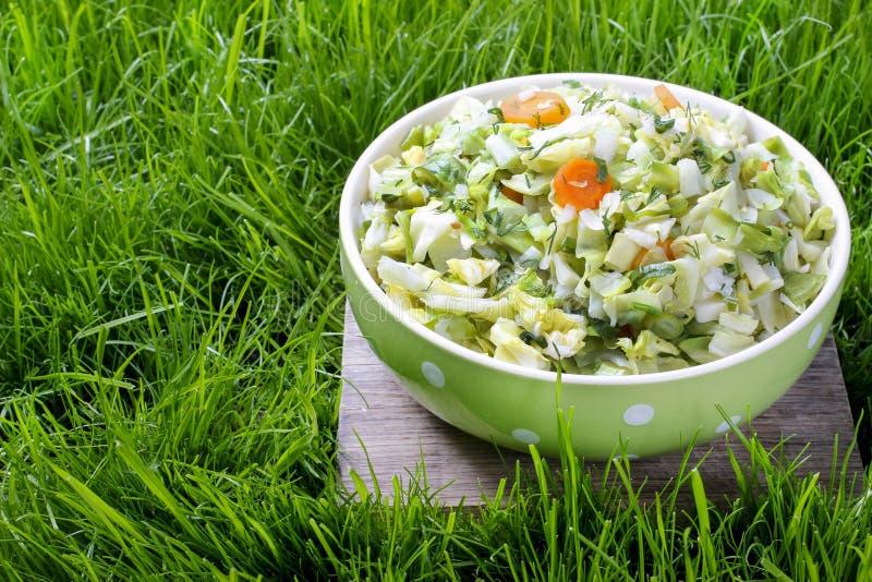 Download Свежий салат в шаре поставленном точки зеленым цветом Стоковое Фото - изображение насчитывающей цвет, природа: 40590334