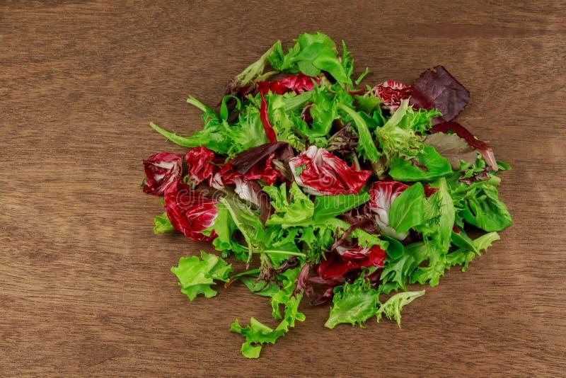 Свежий салат с смешанным arugula зеленых цветов, mesclun, едой mache здоровой стоковая фотография rf