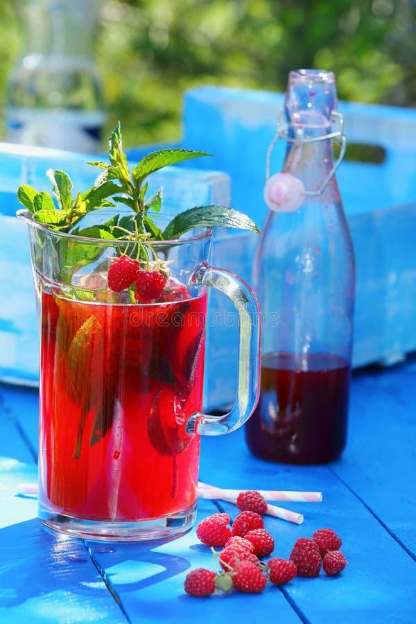 Свежий сок поленики с мятой в саде стоковое изображение