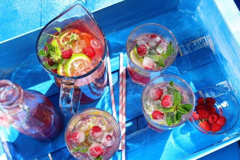 Свежий сок поленики с мятой и лимоном стоковое фото rf