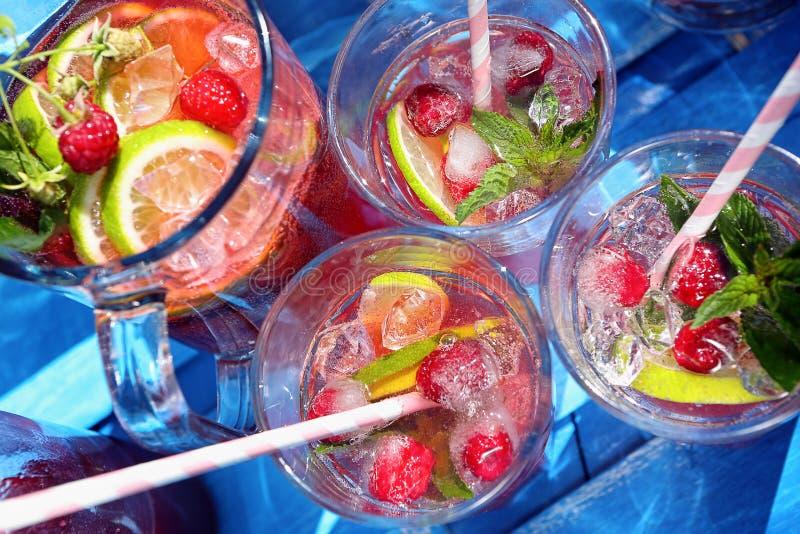 Свежий сок поленики с мятой и лимоном стоковые фото
