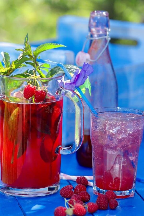 Свежий сок поленики с мятой и лимоном стоковые изображения rf