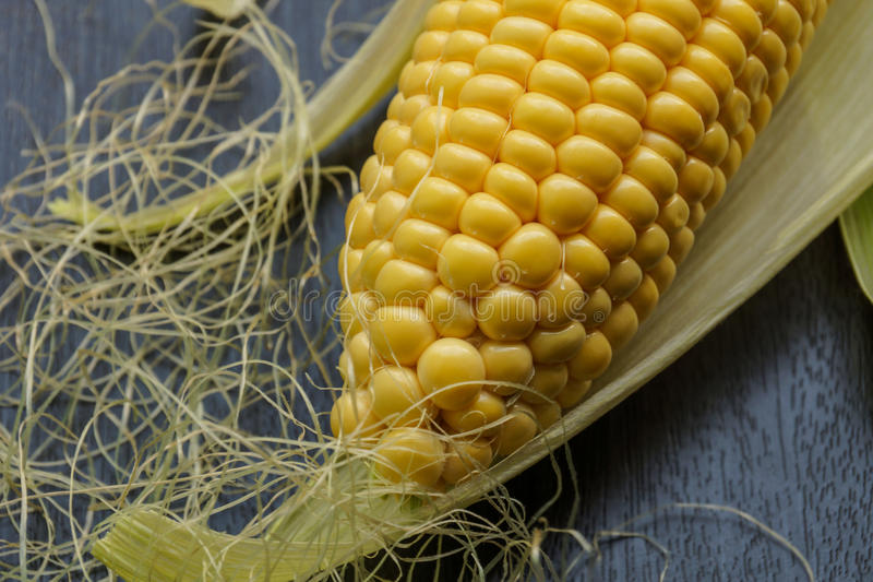 Свежий стержень кукурузного початка со своим cornsilk стоковое изображение rf