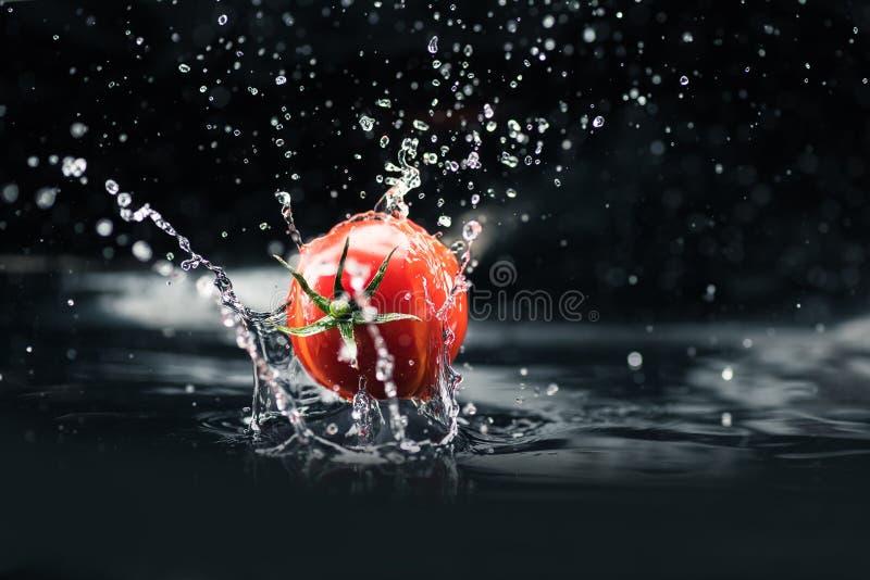 Свежий томат падая в воду стоковые фотографии rf