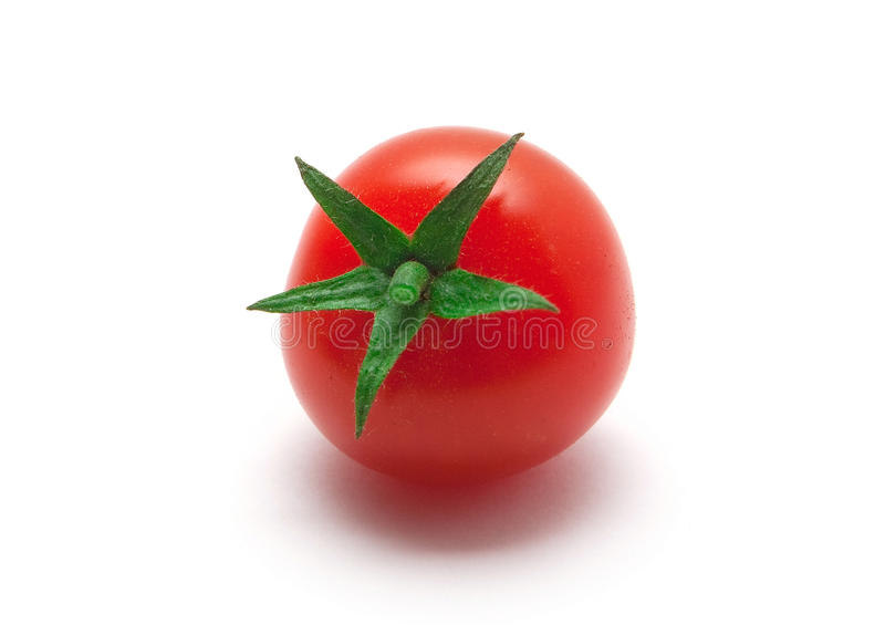 свежий томат стоковое изображение
