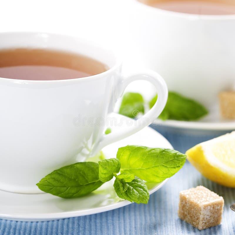 свежий травяной чай мяты стоковое фото rf
