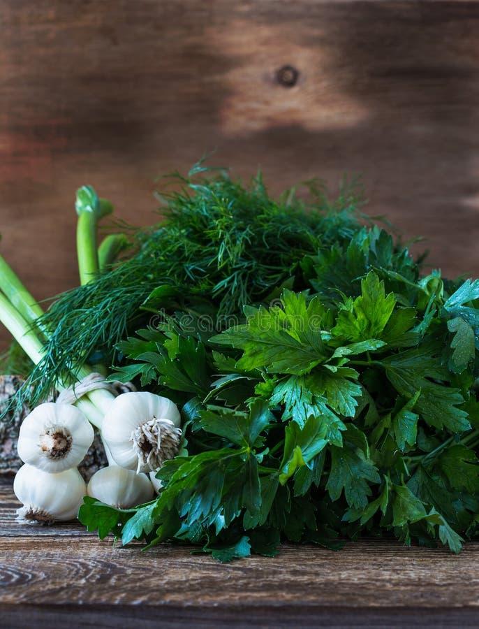 Свежий укроп, пук петрушки и органический молодой чеснок стоковая фотография rf