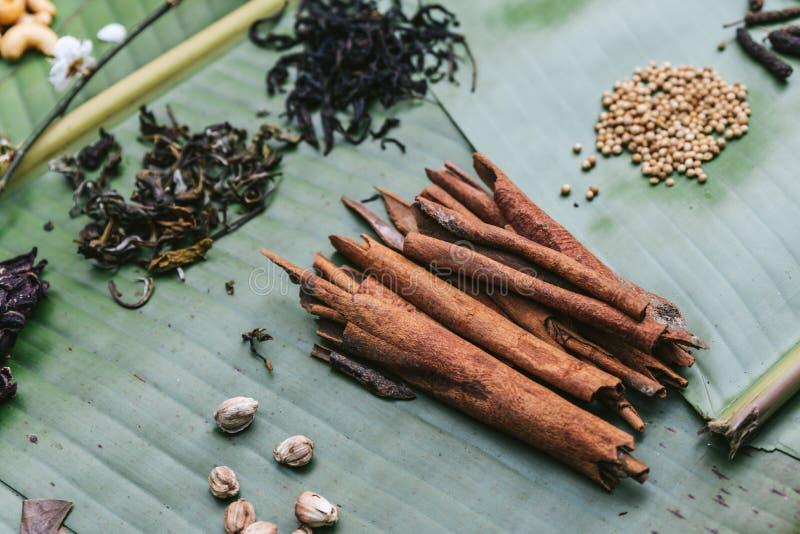 Свежий циннамон и много специй на листьях банана Пример пряного и ароматичного вкуса кофе стоковая фотография
