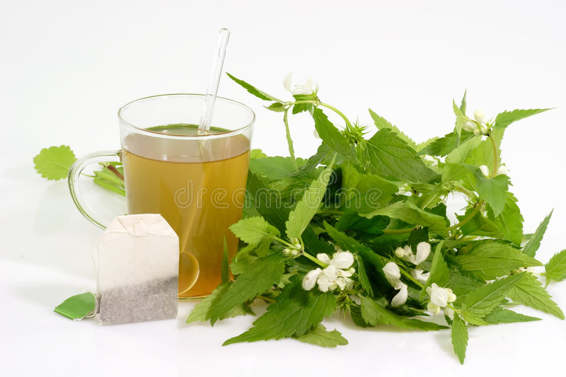 свежий чай стоковые изображения