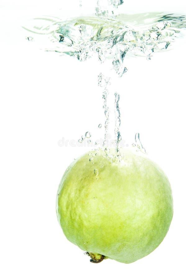 свежий guava стоковое фото