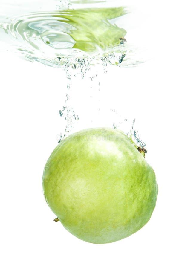 свежий guava стоковая фотография