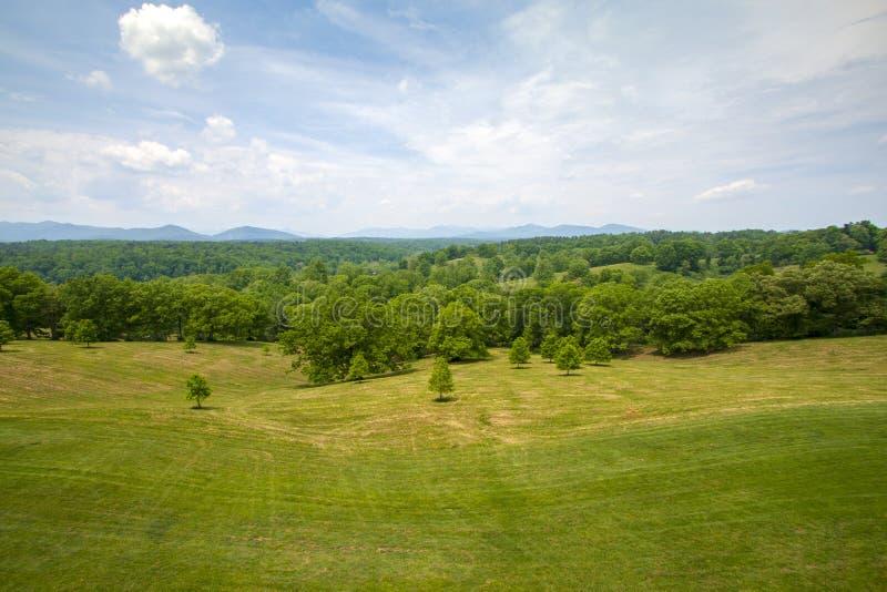 Свежо накошенное поле с forst и далекие горы в предпосылке под ярким голубым небом стоковые изображения rf