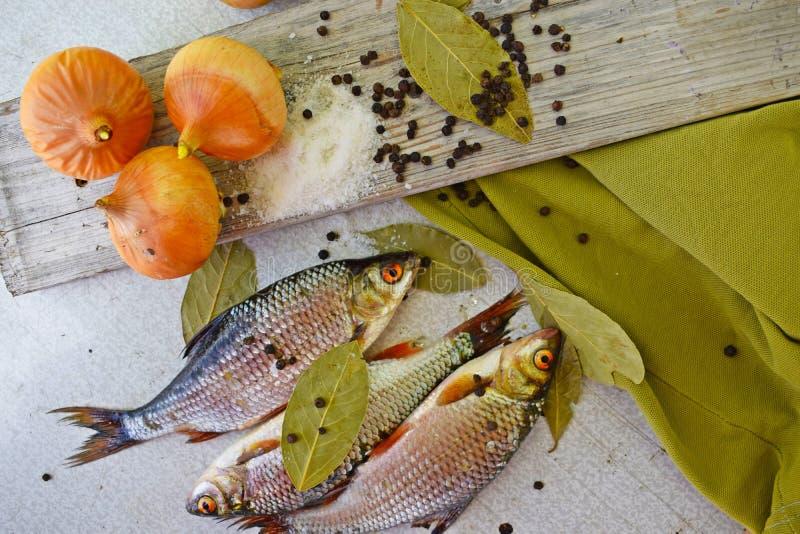 Свежо уловленные рыбы стоковое фото