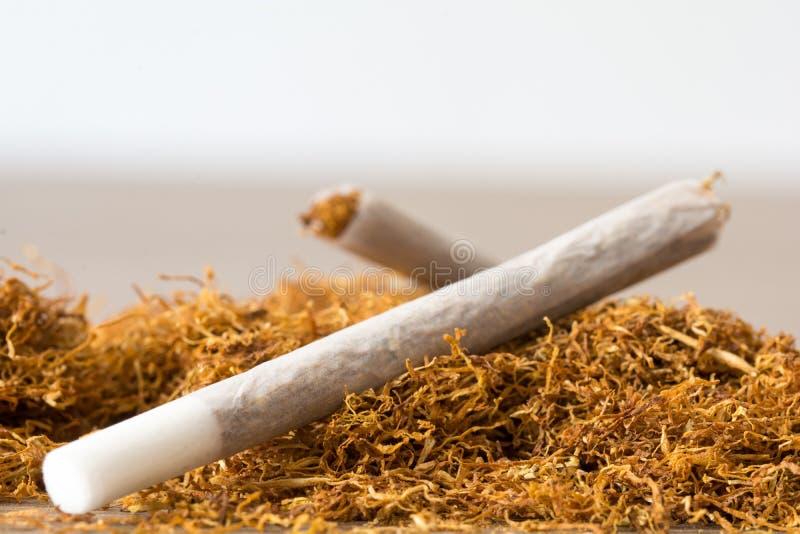 Свернутые сигареты стоковая фотография rf