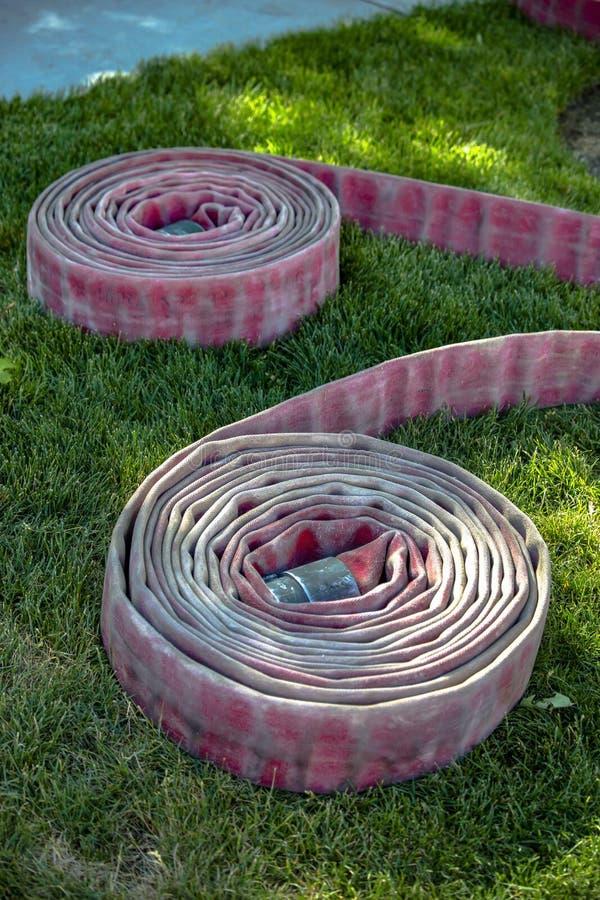 2 свернутых пожарного рукава на траве стоковое изображение rf