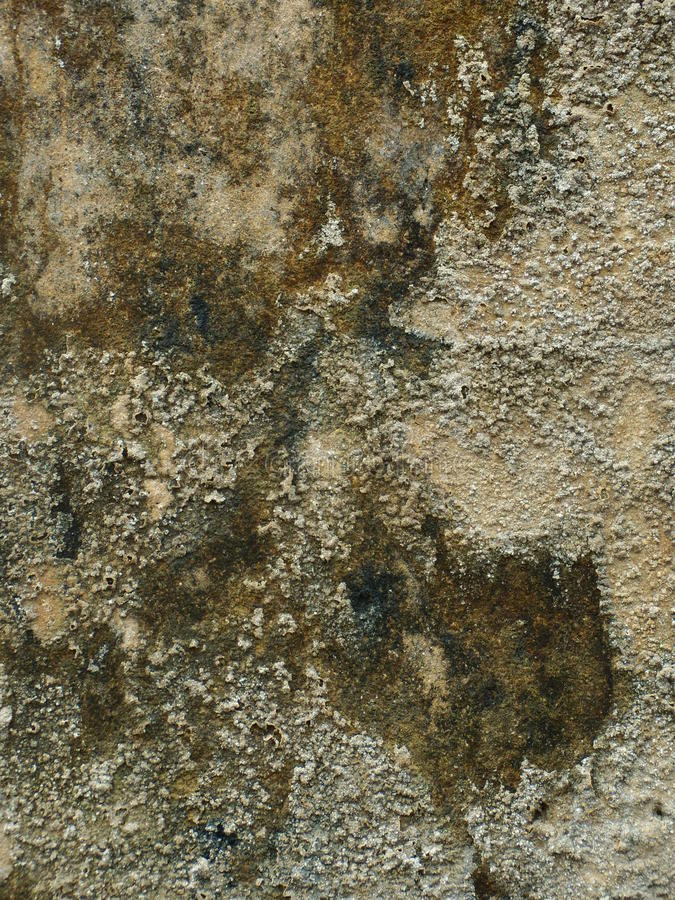 Сверх-grungy & пакостная серая конкретная текстура стоковые фотографии rf