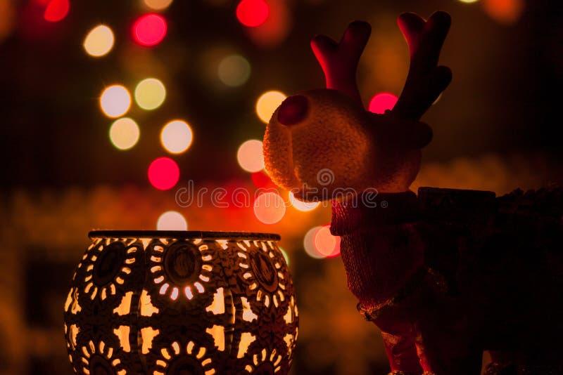 Света и северный олень рождества стоковое фото