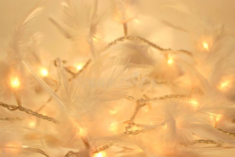 света праздника стоковые изображения