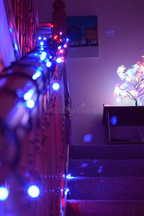 Света рождества на лестницах стоковое фото rf