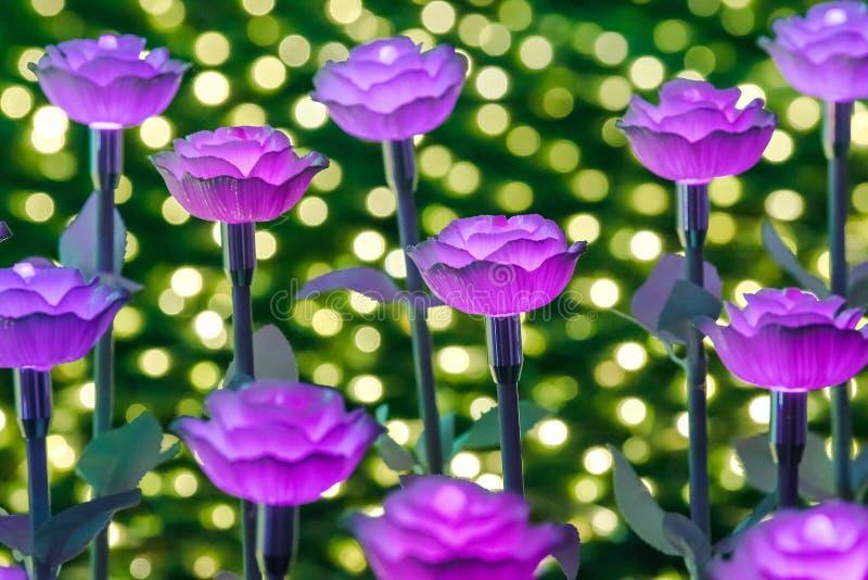 Света украшены как цветки для создания красивого света стоковое изображение rf
