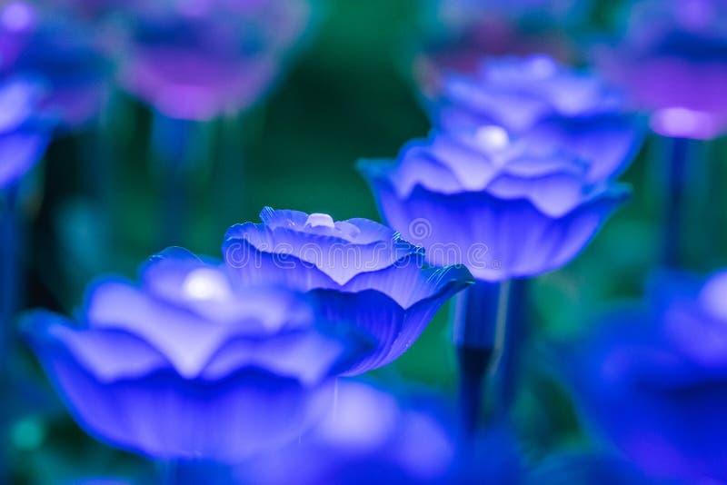 Света украшены как цветки для создания красивого света стоковое фото rf