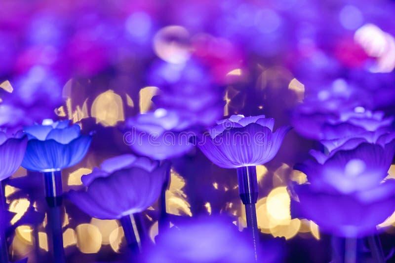 Света украшены как цветки для создания красивого света стоковые изображения rf