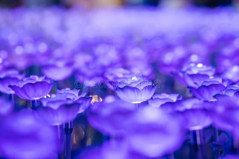 Света украшены как цветки для создания красивого света стоковое изображение