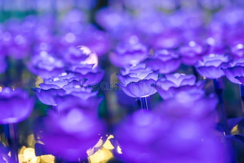 Света украшены как цветки для создания красивого света стоковые фотографии rf