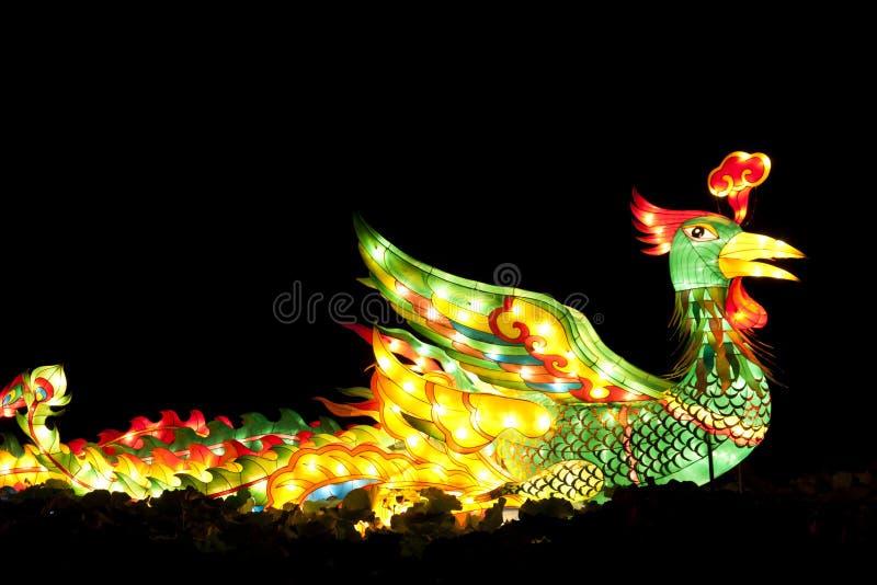 светильник phoenix стоковые фотографии rf