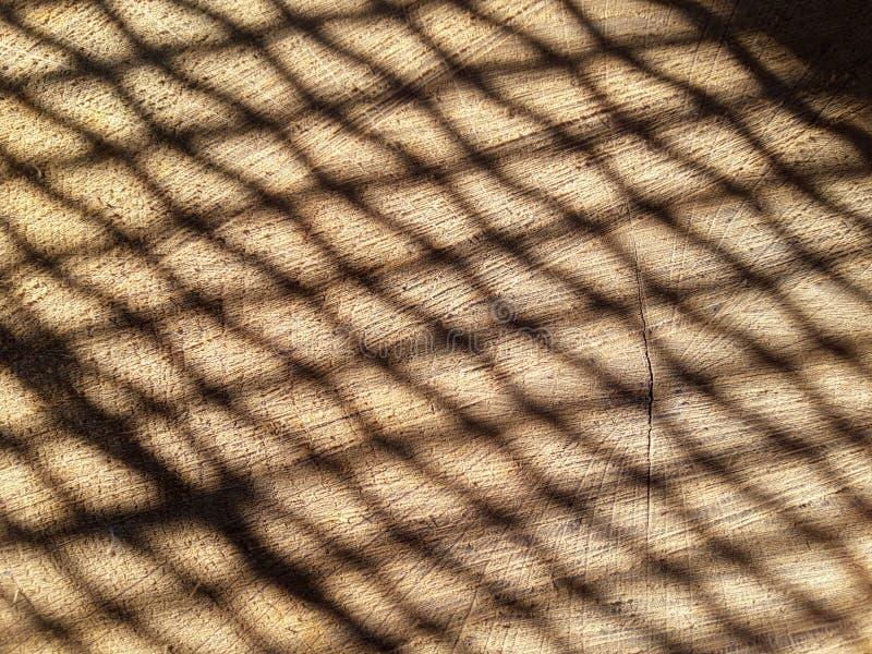 светлая сеть стоковое фото