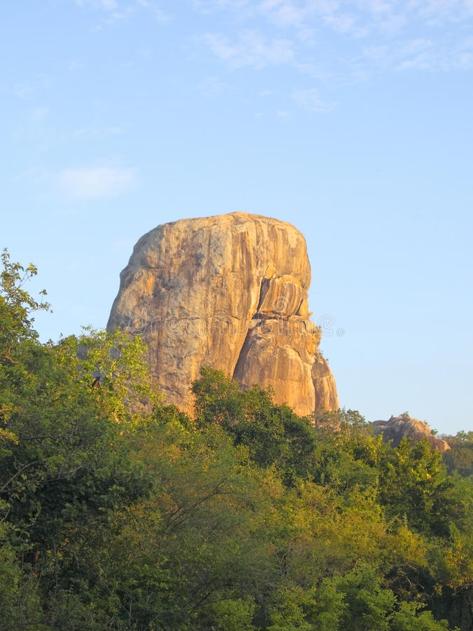 светлый национальный парк утра трясет yala стоковая фотография rf