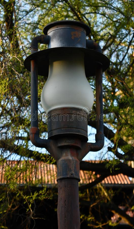 Светлый столб с деревьями стоковое фото rf