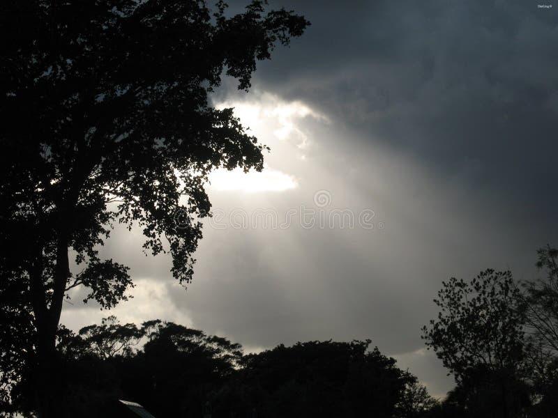 световые лучи стоковые изображения rf