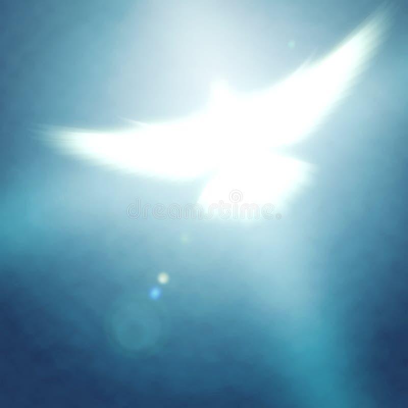 Светя dove иллюстрация вектора