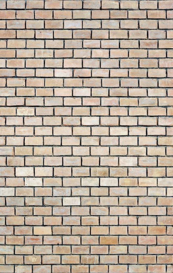 Светлая бежевая предпосылка кирпичной стены стоковое изображение rf