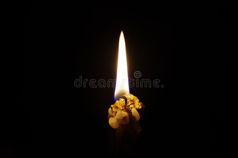 Свет в темноте стоковая фотография rf